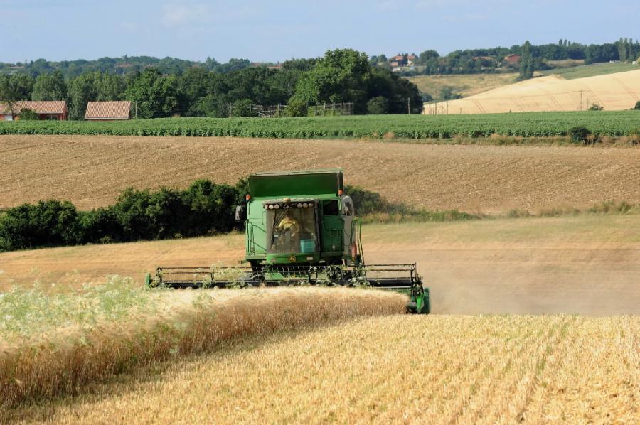 W Polsce ponad 700 tys. rolników prowadzi działalność rolniczą na obszarach górskich i innych obszarach o niekorzystnych warunkach gospodarowania.