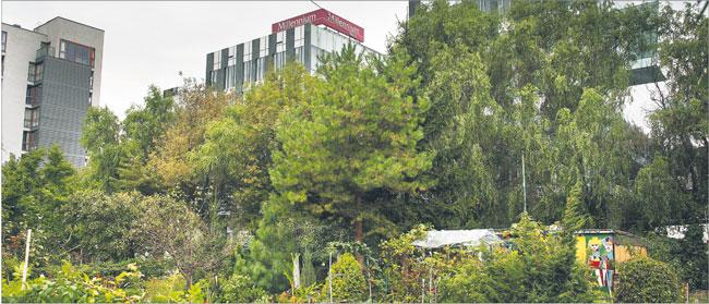 Prezes Sądu Najwyższego skarży ustawę o ogródkach działkowych