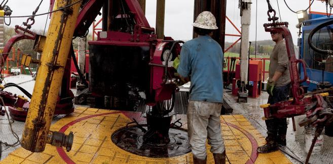 Obszar koncesyjny, który należał do Amerykanów, uznawano za jeden z bardziej perspektywicznych. Eksperci przyczyn wycofania się ExxonMobil szukają gdzie indziej.