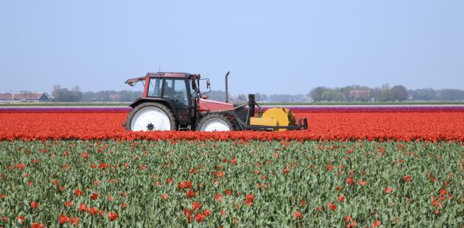 Rząd rozpocznie prace nad ustawą rolną