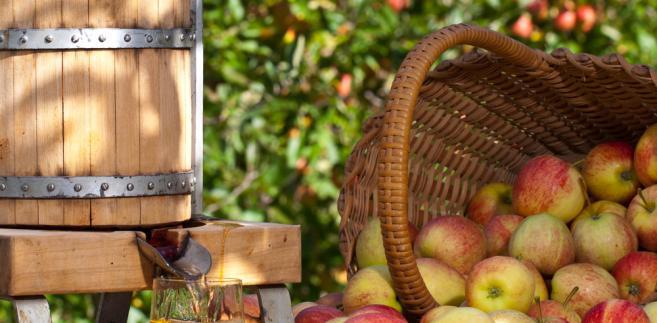 Zwróciła uwagę, że choć Kazachstan eksportuje rocznie ok. 180 tys. ton jabłek, to sam importuje 100 tys. ton tych owoców, z czego 90 tys. ton to jabłka z Polski.