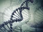 Jan Strelau: Polityka dziedziczona w genach? Nie ma takiej
