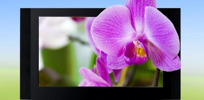 Telewizja 3D. Fot. Shutterstock