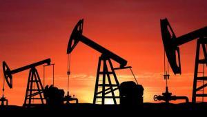 Baryłka ropy West Texas Intermediate w dostawach na listopad na giełdzie paliw NYMEX w Nowym Jorku jest wyceniana po 44,78 USD, po zwyżce o 11 centów.