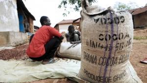 Dotąd głównym bogactwem Ghany były plantacje kakao