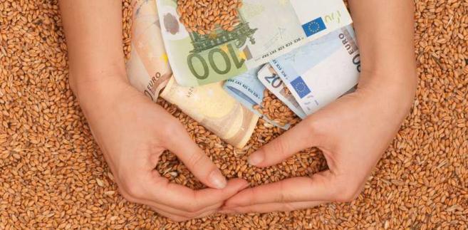 Produkcja zbóż coraz mniej opłacalna - rosną koszty, spadają ceny