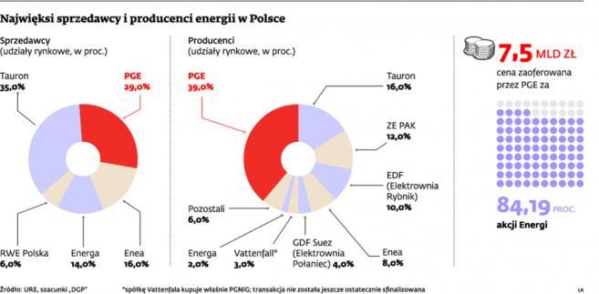 Najwięksi sprzedawcy i producenci energii w Polsce