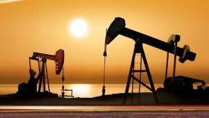 Dochody z petrodolarów spadły w Nigerii o połowę