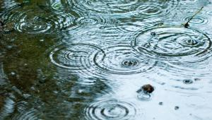 Gminy przekonują, że nałożenie opłat za deszczówkę to niejedyne obciążenie finansowe, z jakim będą musiały sobie poradzić.