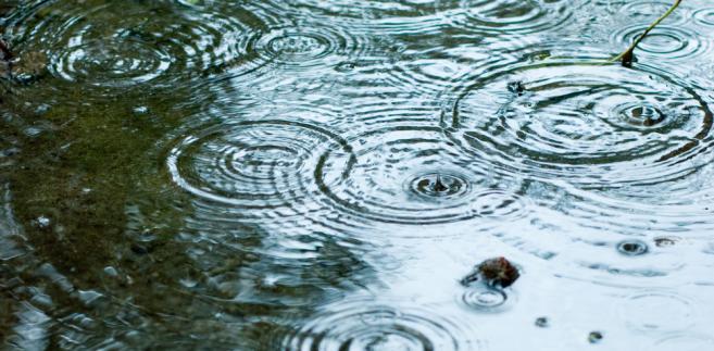 Poznań, jako jedno z pierwszych miast, wprowadził opłaty za wodę spływającą do kanalizacji deszczowej.