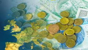 Andrzej Halicki z Platformy Obywatelskiej stwierdził, że Europa rozwija się szybciej - właśnie dzięki wspólnej strefie walutowej.