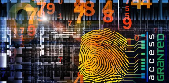Firmy tracą miliony z powodu cyberataków, których celem są ich strony internetowe i wewnętrzna sieć.