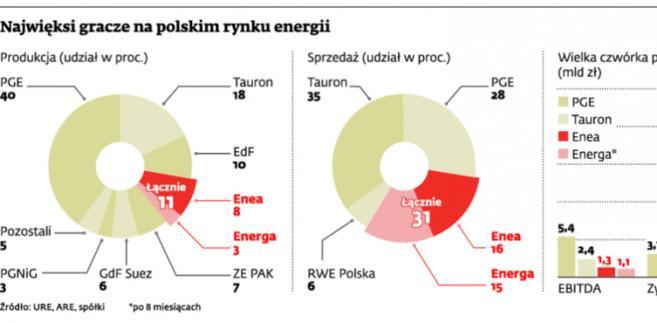 Najwięksi gracze na polskim rynku energii