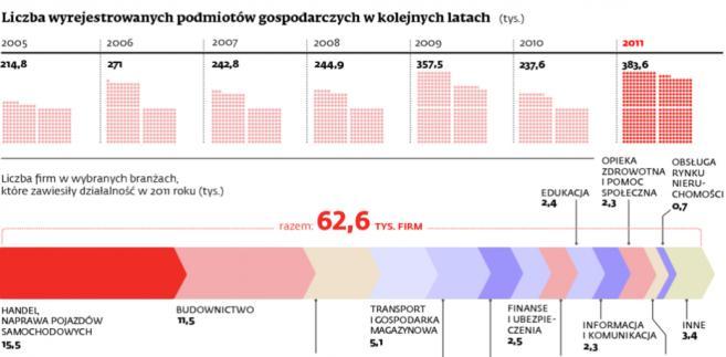 Liczba wyrejestrowanych podmiotów gospodarczych w kolejnych latach
