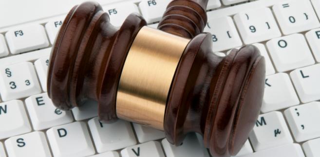 Proponowane przepisy wykonawcze określają zasady organizowania i uczestniczenia w nowej formie licytacji publicznej, tj. licytacji elektronicznej.