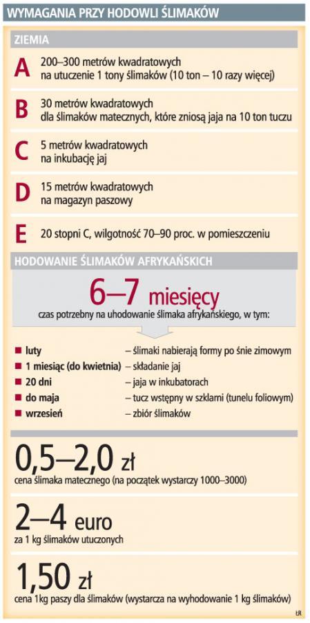 Na <strong>hodowli</strong> ślimaków rocznie można zarobić nawet 200 tys. zł