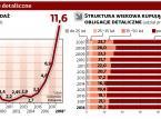 Polacy coraz więcej pożyczają rządowi