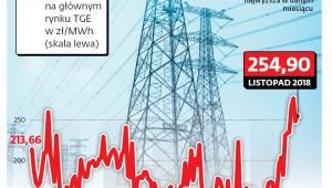 Rynek energii i praw do emisji CO2