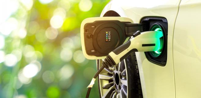 Według prognoz Boston Consulting Group w Europie w 2030 r. ponad 20 proc. sprzedaży będą stanowić auta elektryczne, a licząc wraz z hybrydowymi, udział ten przekroczy 50 proc.