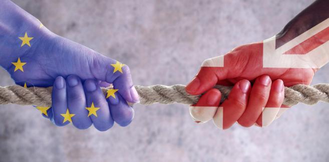 Według informacji gazety, grupa w większości proeuropejskich ministrów ma nadzieję na ośmiotygodniowe wydłużenie procesu opuszczenia Wspólnoty w celu zakończenia procesu ratyfikacji umowy wyjścia oraz przyjęcia przez Izbę Gmin niezbędnej legislacji dotyczącej m.in. handlu i imigracji.