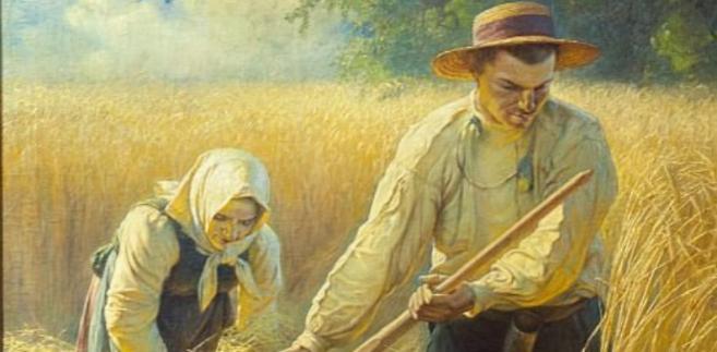 chłop, żniwa, rolnictwo