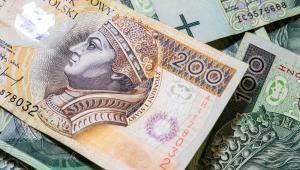 Kto w największym stopniu dokłada się do budżetu państwa, a kto odprowadza najmniejszy podatek w Polsce.
