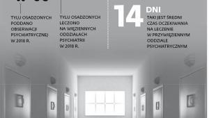 Psychiatria za kratami