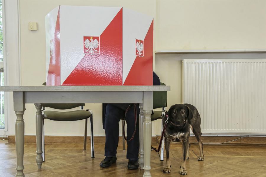 wybory do PE 2