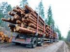 Na papierze waga się zgadza. Problem z ciężarówkami wożącymi drewno