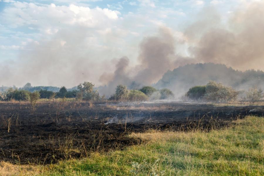 Pożar po wypalaniu traw