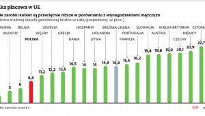 Luka płacowa w UE